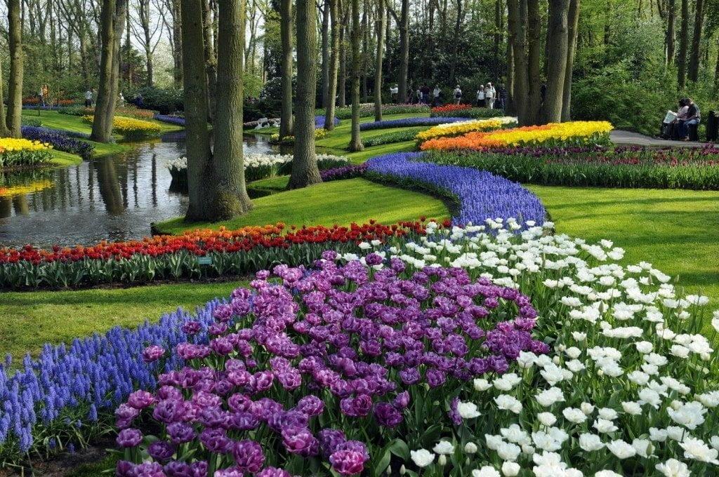 حديقة كيوكينهوف أجمل حديقة في العالم 3
