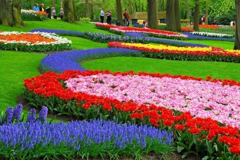 حديقة كيوكينهوف أجمل حديقة في العالم 13