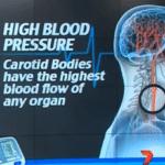 علاقة الحمية الغذائية بفصائل الدم ( لكل فصيلة دم نظام غذائى خاص بها ) 3