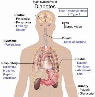 علماء فنلنديون : فيروسات تتسبب في مرض السكري و أنتاج لقاح للوقاية منه ! 5