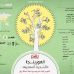 فوائد شجرة المورينجا Moringa Oleifera 2