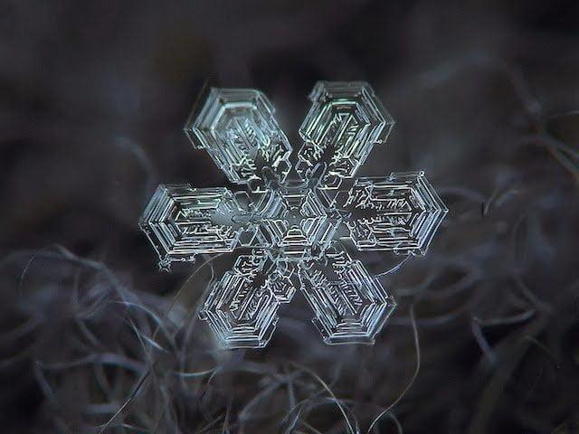 شاهد روعة بلورات الجليد تحت المجهر 4