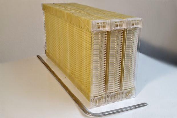حصاد عسل النحل من الخلية إلى الصنبور مباشرة ! 4