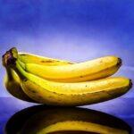 فوائد بكتيريا البروبيوتيك النافعة و مصادرها الغذائية 2