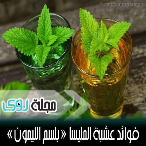 استخدامات و فوائد عشبة المليسا ( بلسم الليمون ) 5