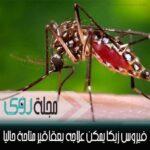 تعرف على فيروس زيكا Zika Virus وكيف تقي نفسك منه 3