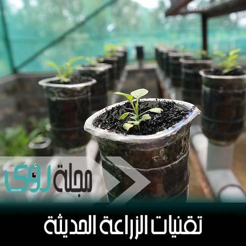 تقنيات الزراعة بدون تربة : الهيدروبونيك - الأيروبونيك - الأكوابونيك 9