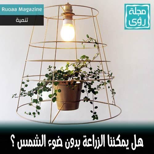 هل يمكن زراعة النباتات بدون ضوء الشمس تحت لمبات إضاءة عادية ؟ 5